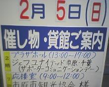 PIC_0262